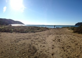 Dune di Lacona